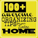 100 Spring Cleaning Tips