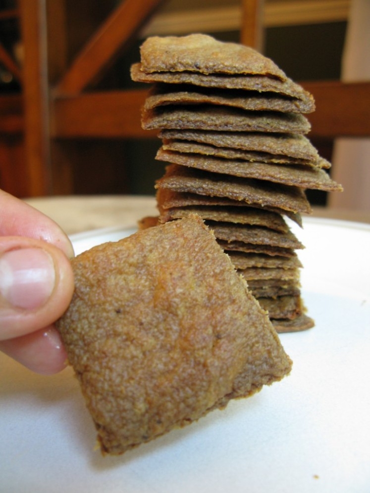 plantain crackers paleo