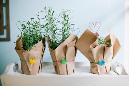 diy valentine's herbs