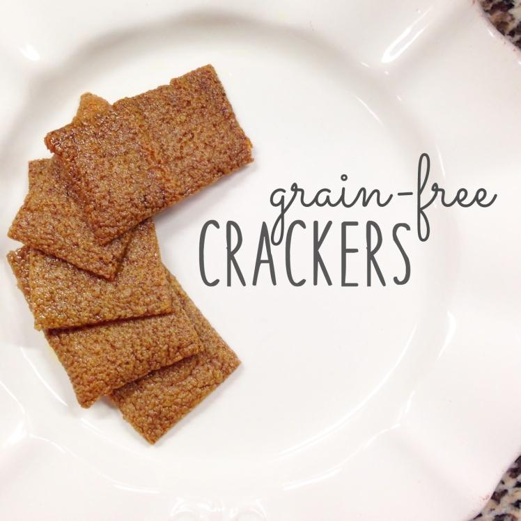 3.28.14 grain free crackers