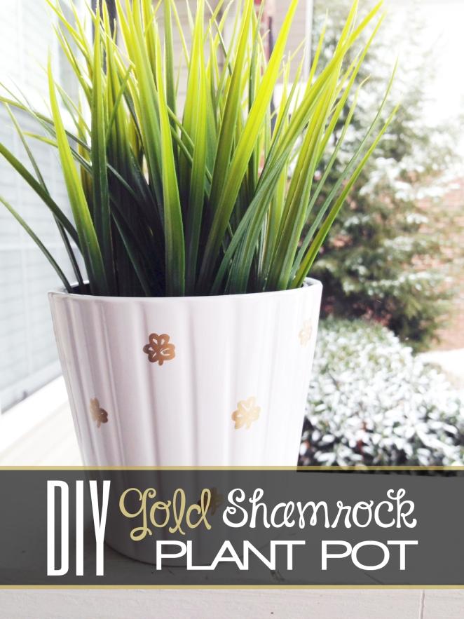 3.4.14 gold shamrock plant pot
