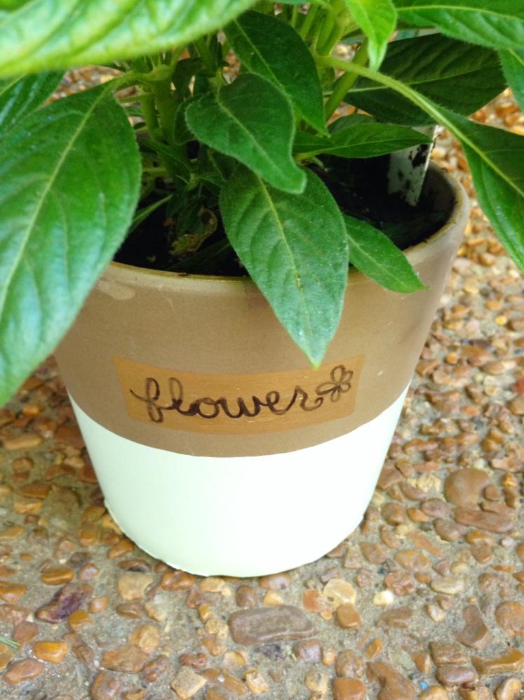 diy paint dipped pot